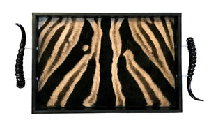 TS4 - Rectangular Zebra Tray with Springbok Polished Horns - Trophy Room Collection