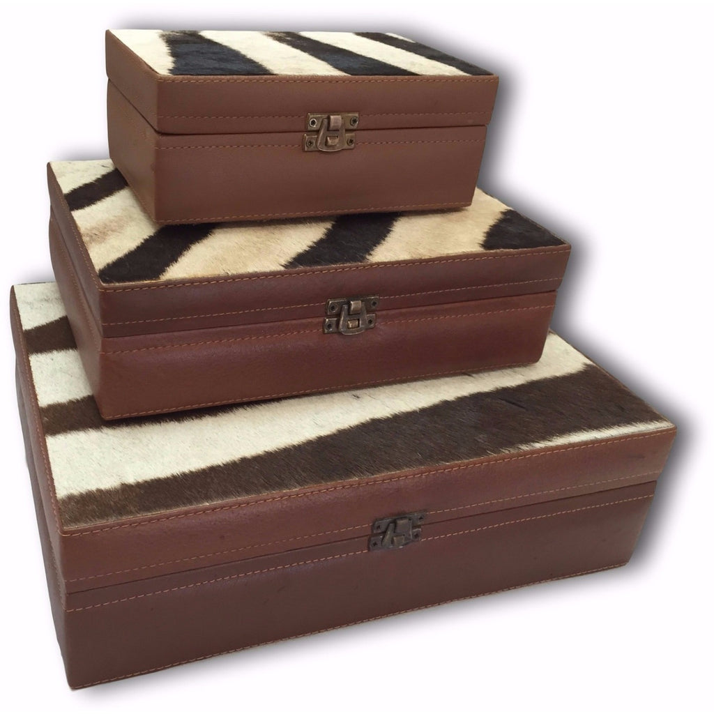 Zebra Stationary/ Cigar Boxes - Trophy Room Collection