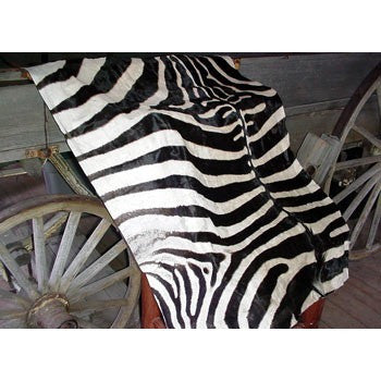 Zebra Upholstery - Trophy Room Collection