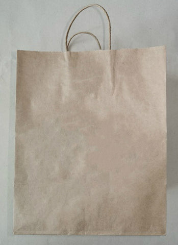 Kraft Paper Bag with Handles SM00621/5#