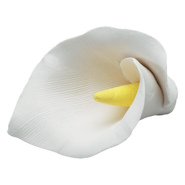 Calla Lily - White - Box of 10 - Made of Gum Paste
