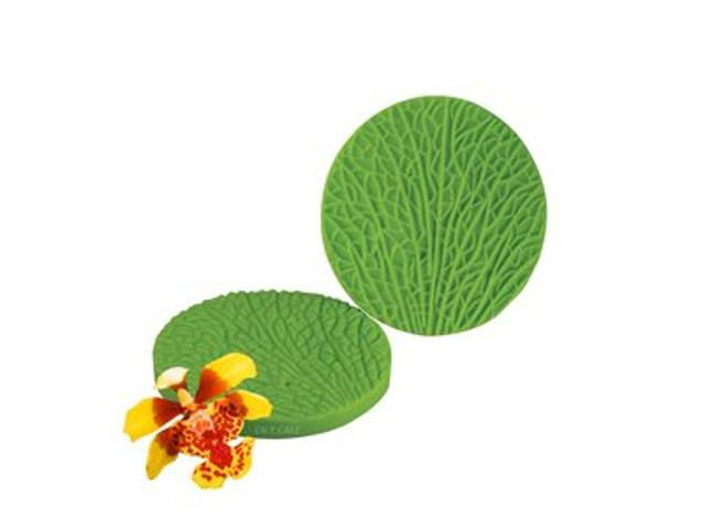 Oncidium Petal(Throat) Veiner - JR
