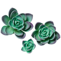 Succulents - Purple - Set of 3