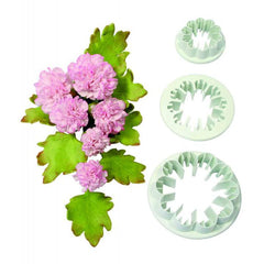 Carnation - Set of 3