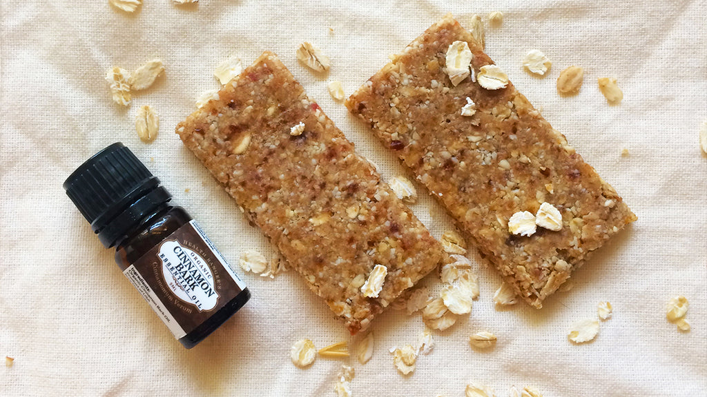 Healthy No-Bake Cinnamon Energy Bars