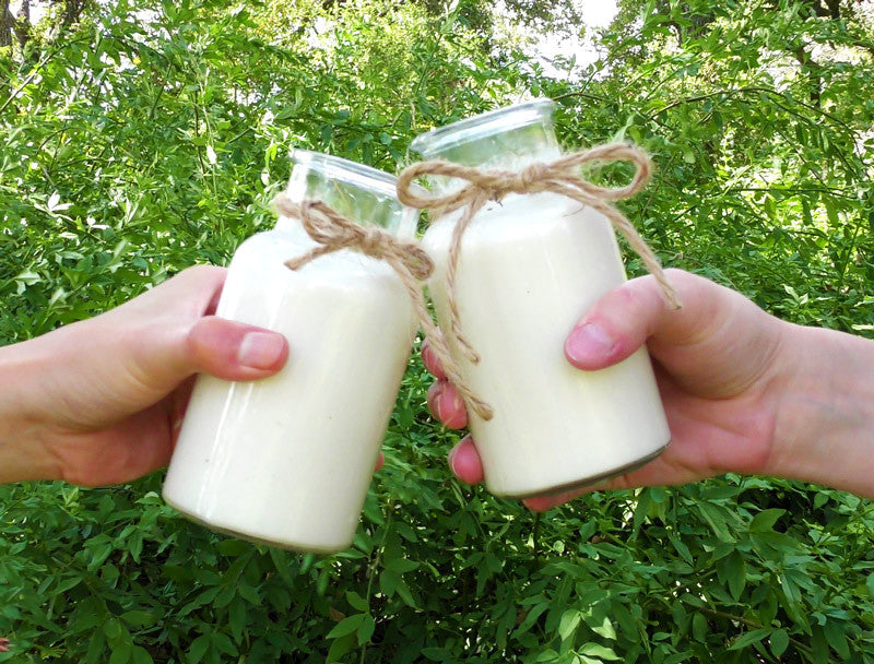 Organic Raw Cashew Milk