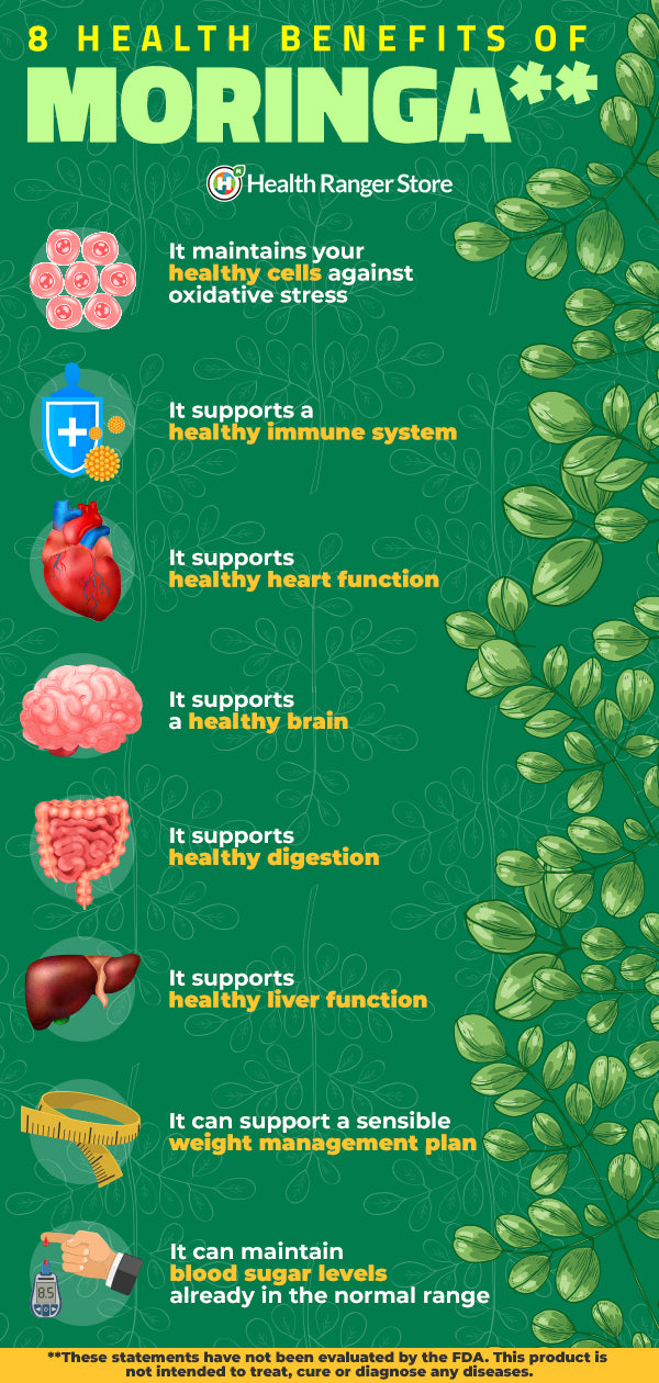 Health Benefits Moringa