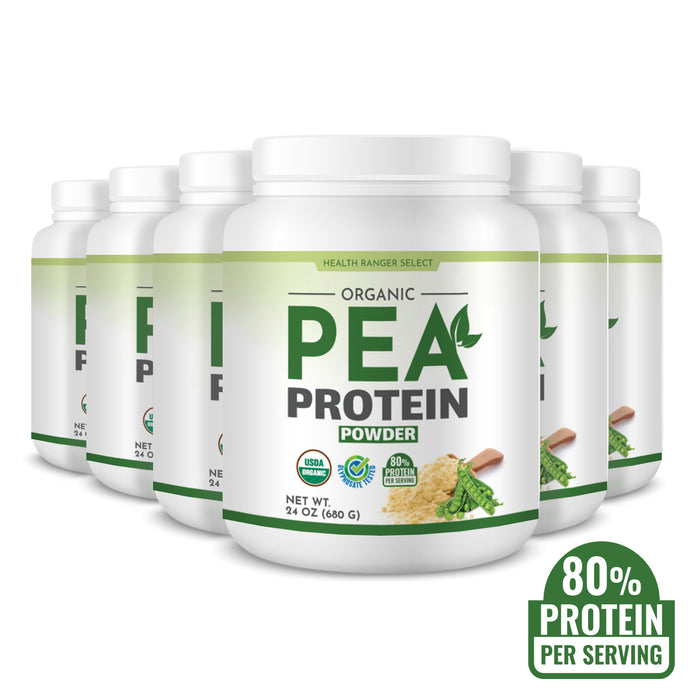 Organic Pea Protein Powder 24 oz (680g) (6-Pack)