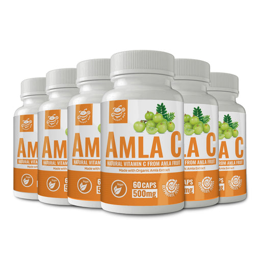 Amla C (Natural Vitamin C from Amla Fruit) 60 Caps (500 mg each) (Made With Organic Ingredients) (6-Pack)