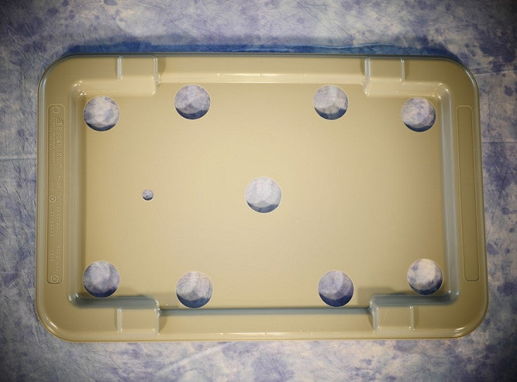 Grow Box Lid 2.0 with 9 Holes