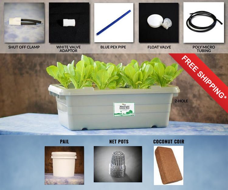 Food Rising Mini-Farm Grow Box 2.0 (Cucumbers Starter Kit with 2-hole Lid) (Ship within 2-6 business days)