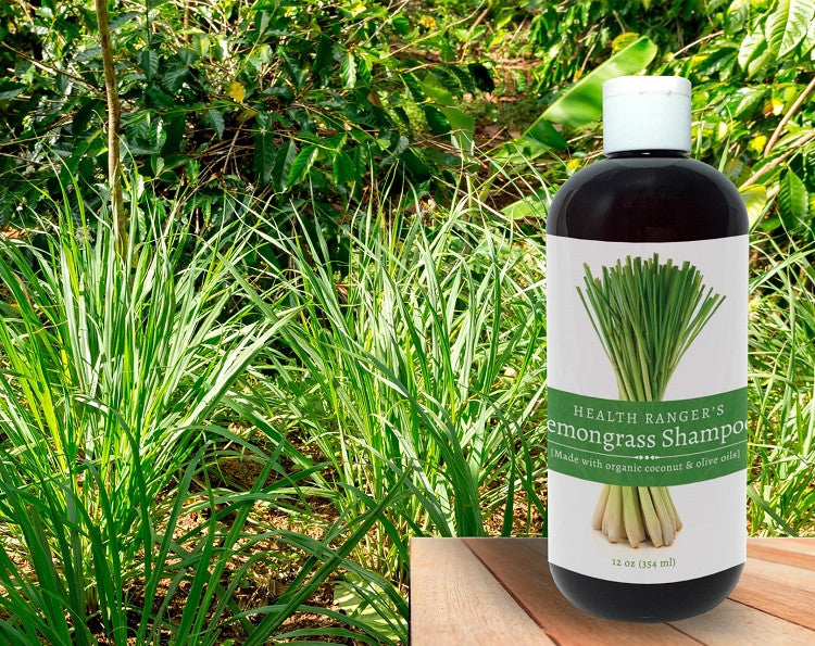 Health Ranger's Lemongrass Shampoo 12oz