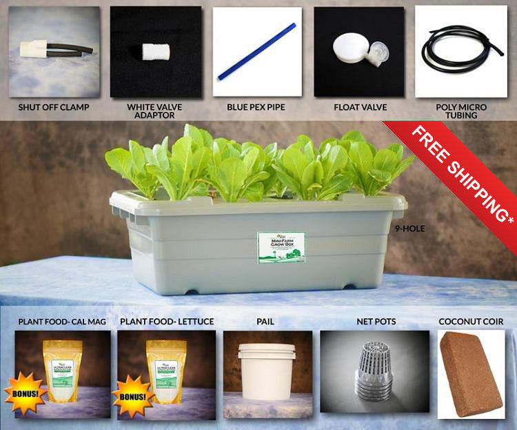 Food Rising Mini Farm Grow Box 20 Lettuce Starter Kit with 9 hole