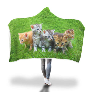 Here Comes Trouble - Kittens Hooded Blanket