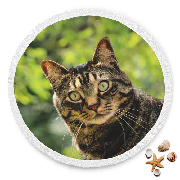 Tabby Cat Round Beach Blanket