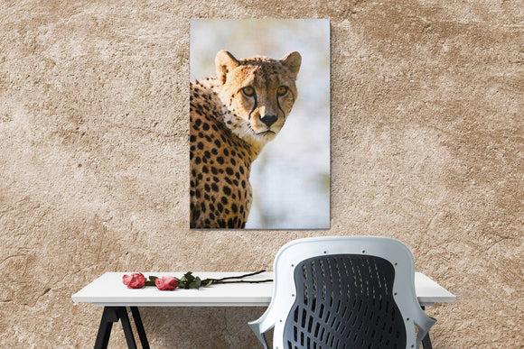Cheetah Portrait Canvas Wall Art