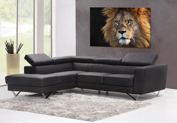 Lion Portrait Canvas Wall Art