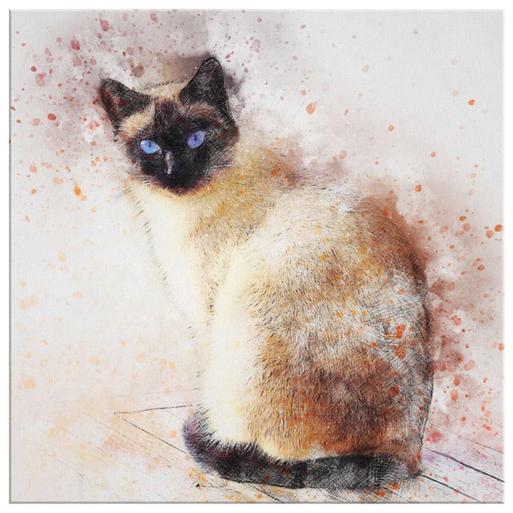 Siamese Cat Canvas Wall Art Print