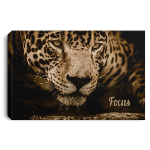 Jaguar - Focus Wall Canvas