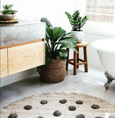 houseplants bathroom