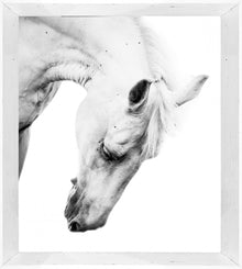 Aspen Photographic Print with Frame
