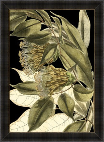 Tranquil Tropical Leaves V Framed Print