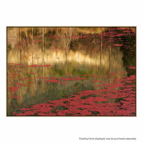 Out of Love Photographic Canvas Print with Floating Frame
