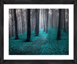 Aqua Forest Photographic Print with Frame