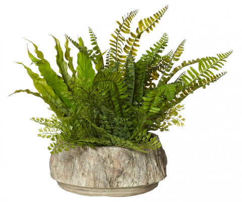 Fern Garden-Forest Pot
