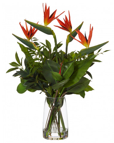 Bird of Paradise in Strata Vase