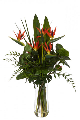 Bird of Paradise in Retro Vase