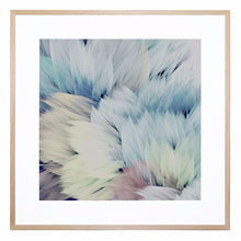 Flori Star Giclee Print with Frame