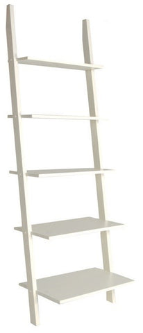 Leaning Ladder with Shelves