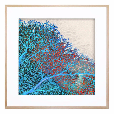 Coral Flow Acrylic Print with Frame