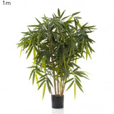 New Bamboo Tree 1m