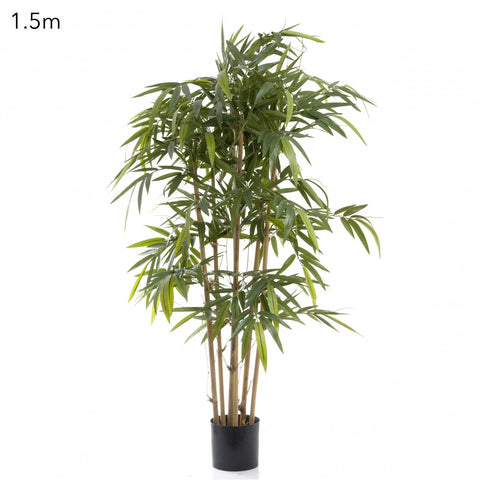 New Bamboo Tree 1.6m