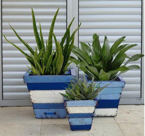 Collaroy Planters Set/3 Square