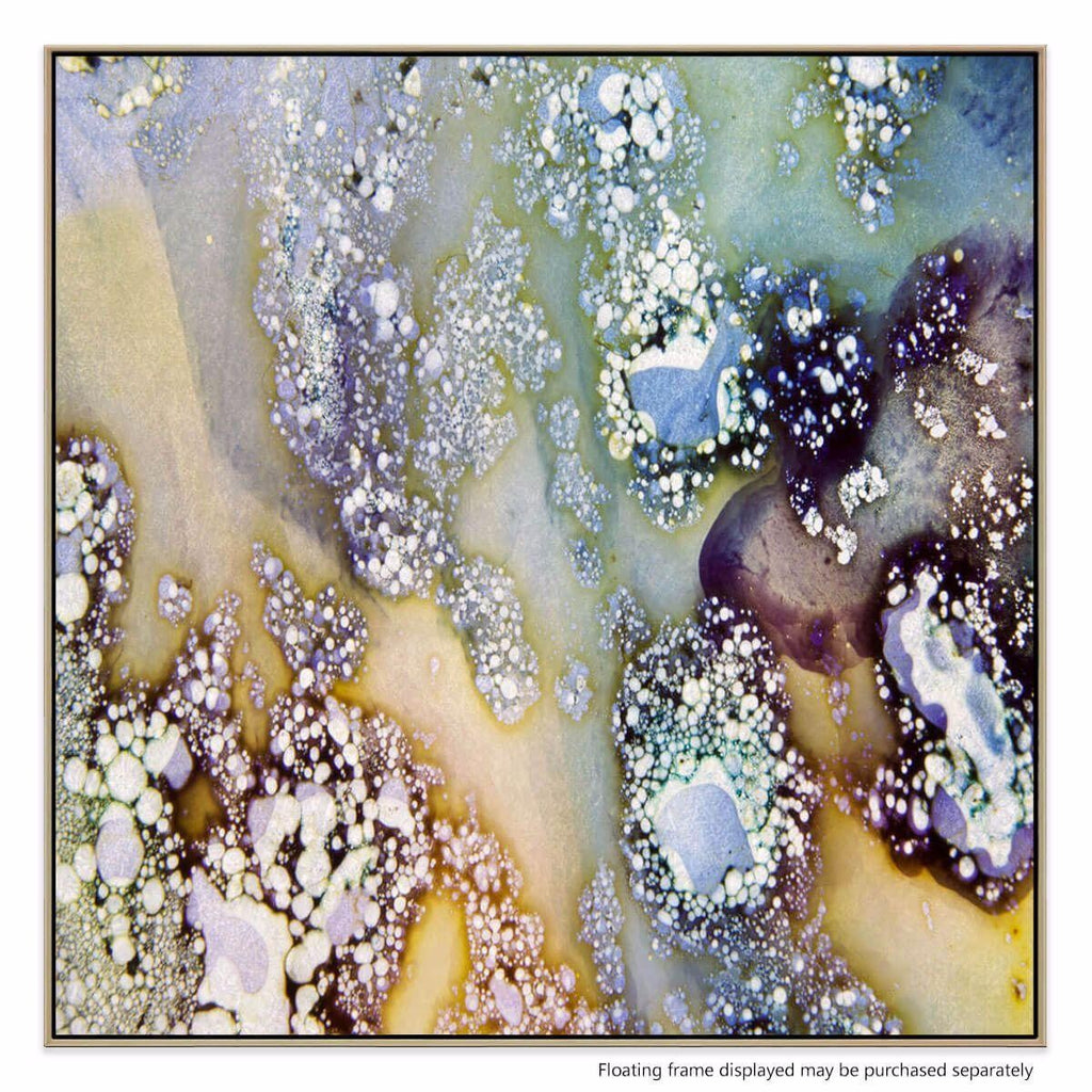 Minerology 1 Canvas Print with Floating Frame