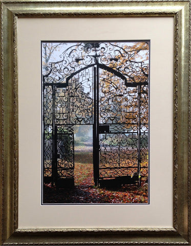 Gates in History Framed Print