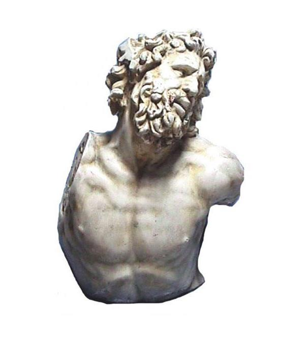 Bust of Laocoon