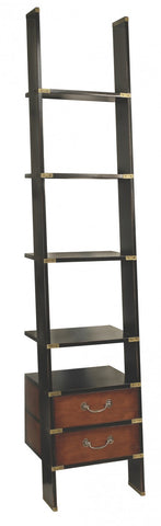 Library Ladder Shelves Black