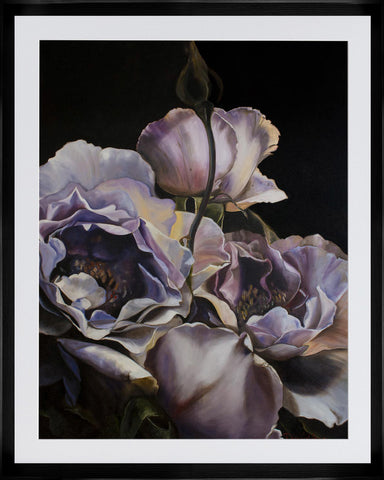 Alba Rosa Limited Edition Print By Diana Watson