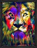 Lion Max Print with Frame