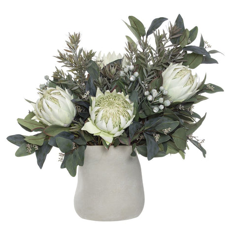 Native Protea Mix in Mahlia Pot Cream 66cmH
