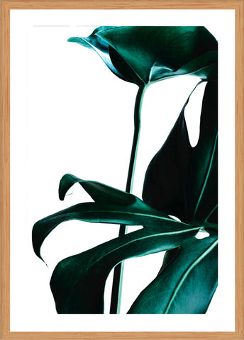 Green Palm Photographic Print with Frame