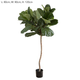 Fiddle Leaf Tree 1.2m