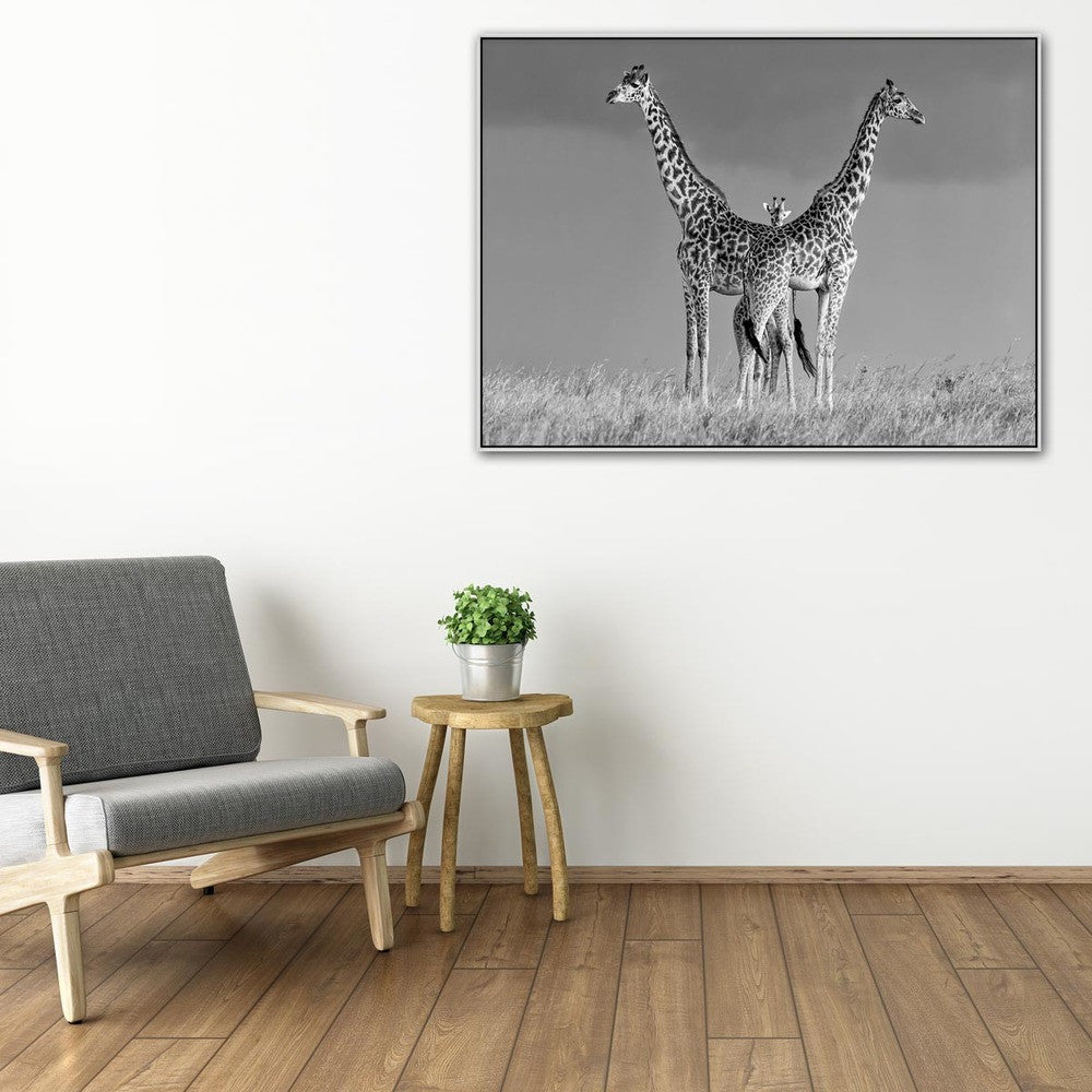 Between The Two Photographic Canvas Print with Floating Frame