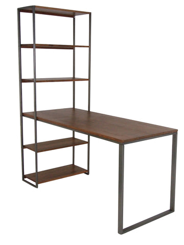 Industrial Ladder for Bookcase