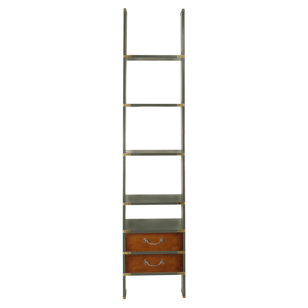 Library Ladder Shelves Grey