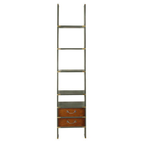 Library Ladder Shelves Ivory